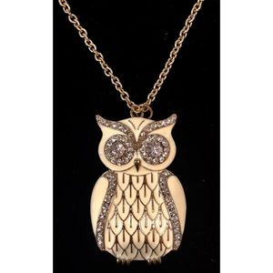 Jewelry - Long Chain Necklace with Owl